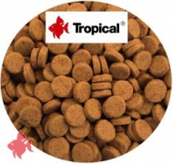 Farbfutter (Color Tabin) Hafttabletten, 1kg Tropical
