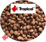 Farbfutter (Color Tabin) Bodentabletten, 1kg Tropical