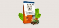 Happy Dog Supreme - Mini Adult 4 kg