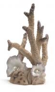 Oase biOrb Korallen Ornament groß