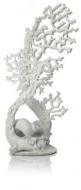 Oase biOrb Fächerkorallen Ornament weiß