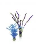Oase biOrb Pflanzen Set mittel blau & lila