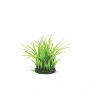 Oase biOrb Grasing klein grün
