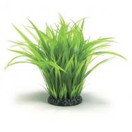 Oase biOrb Grasring groß grün